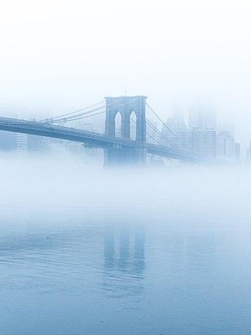 foggybrook